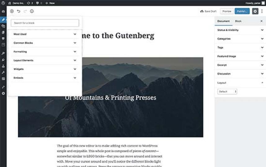 editor on WordPress